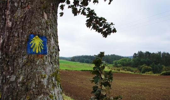 Pielgrzymka Gwiaździsta Drogą św. Jakuba w Polsce w Roku Świętym 2021